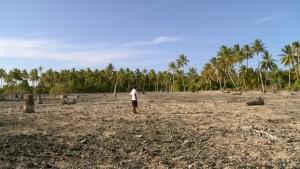 ThuleTuvalu Versaltzung des Ackerbodens
