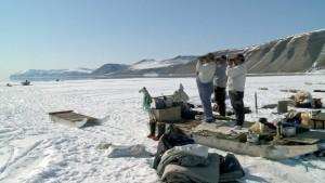 Thule - Ausschau nach Robben