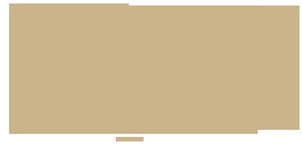 folgestimme_logos